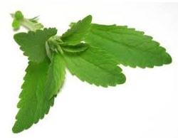 Comprar Hoja de stevia