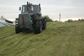 Comprar Silos para harina