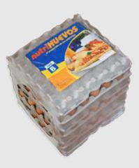 Huevos Pack 180 B