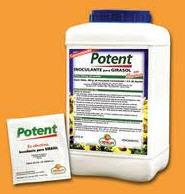 Fertilizantes bacteriales