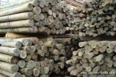 Articulos de madera varios modelos