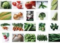 Productos alimenticios de porción
