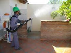 Realización de fumigaciones