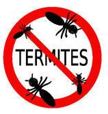 Tratamiento contra termitos