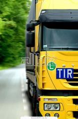 Organización de transporte de cargas