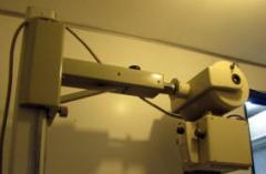 Radiografía veterinaria